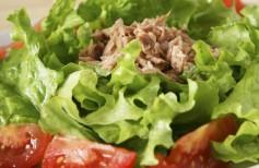 salat s tuncom