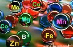 mineralnie veshestva